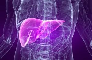 disintossicare-fegato