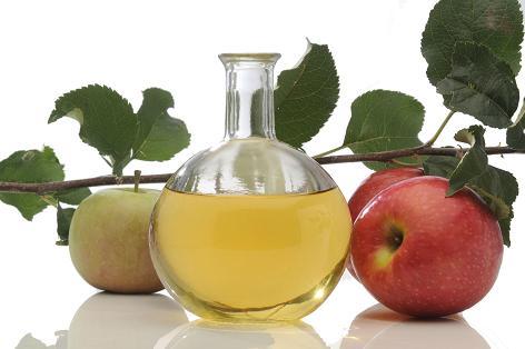 marisco y acido urico remedios homeopaticos para bajar el acido urico el acido urico produce cansancio