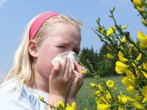 allergie1