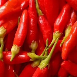 salsa_peperoncini_tabasco