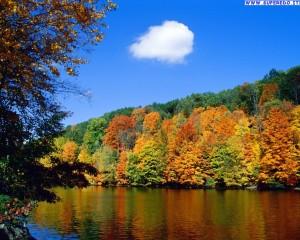 autunno_40