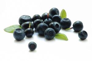 baie-acai-bio-antioxydant-fruit-maigrir-poudre-pure-perte-poids-superfruit-vente-biologique-agoji-3