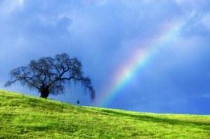 534275_488430201_sfondi-rainbow-006-14_H182144_L