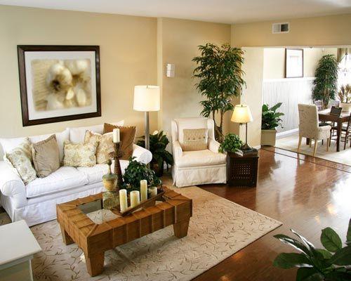 9 piante facili di tenere che depurano l aria in casa 9 - Piante da bagno ...