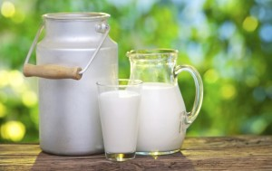 latte-crudo-alla-spina-punti-acquisto-chilometro-zero-640x404