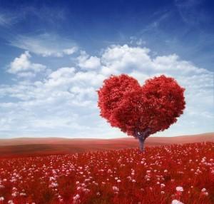 Linizio-di-ogni-cosa-in-amore-e-nellintero-universo-300x286
