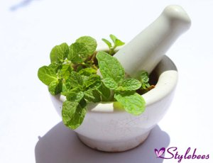 Mint-leaves-for-blackhead-removal-and-glowing-skin