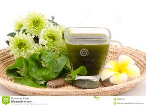centella-asiatica-asiatic-pennywort-centella-asiatica-linn-urban-herbal-drink-has-medicinal-properties-36593589