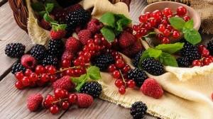 frutti-di-bosco-650x365