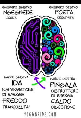 emisfero-destro-sinistro-1