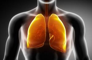 salute-polmoni