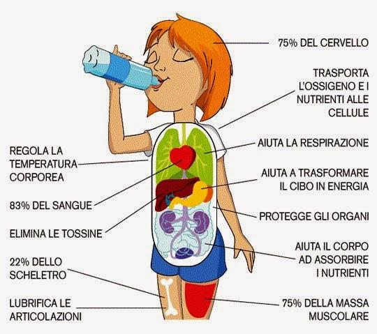 quanta-acqua-nel-nostro-corpo